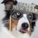 Mein persönlicher Jahresrückblick 2019